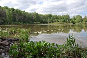 рыбалка яранский район